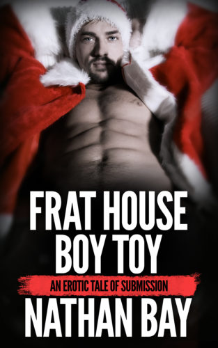 Frat House Boy Toy by Nathan Bay